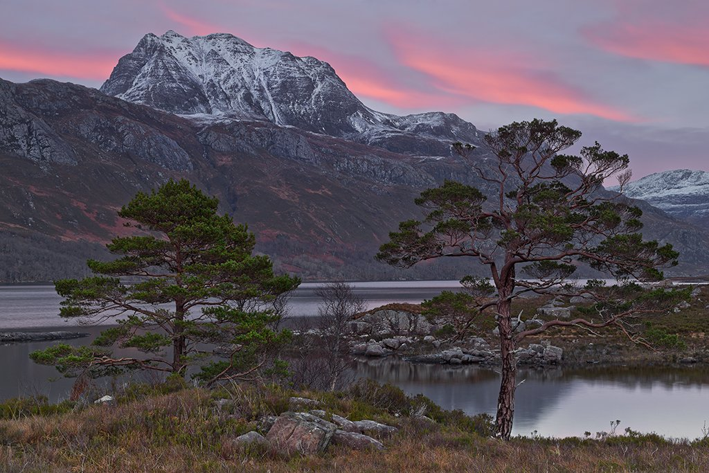 Scots Pines against a backdrop of Loch Maree and Slioch in the gloaming